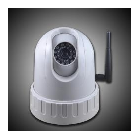 1/3 SONY CCD Wireles Nightvision IP camera (NTSC)